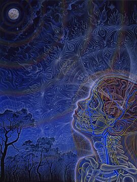 Wonder Alex Grey